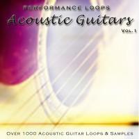 AcousticGuitars
