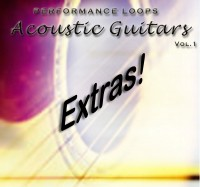 AcousticGuitars-Extras